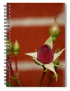Among Others Spiral Notebook