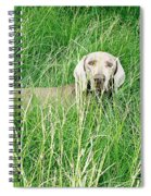 Among The Grasses Spiral Notebook