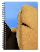 Amongst Giants Spiral Notebook