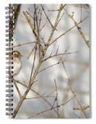 Amongst The Branches Spiral Notebook