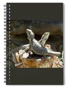 Amphion And Zethus Spiral Notebook