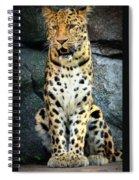 Amur Lepard I Hear Something Spiral Notebook