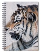 Amur Spiral Notebook