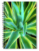 An Agave In Color  Spiral Notebook