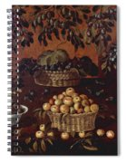An Allegory Of The Month Of June Spiral Notebook