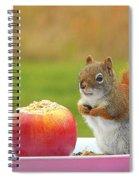 An Apple A Day Spiral Notebook