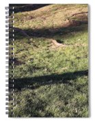 An Arlington Grave With Flowers And Shadows Spiral Notebook