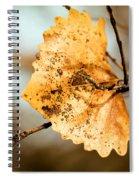 An Autumn Leaf Suspended Spiral Notebook