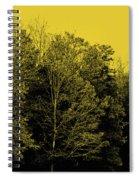 An Autumnal Visit Spiral Notebook