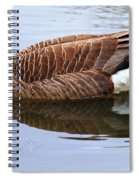 An Elegant Pose Spiral Notebook