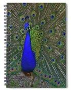 An Eye For An Eye Spiral Notebook