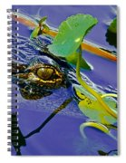An Eye For The Camera Spiral Notebook