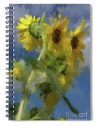 An Impression Of Sunflowers In The Sun Spiral Notebook