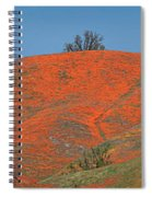 An Ocean Of Orange On The Mountain Top Spiral Notebook