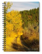 An October Path   Spiral Notebook