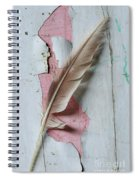 An Old Door And Feather Spiral Notebook