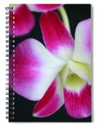 An Orchid Spiral Notebook