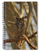 An Owl Spiral Notebook