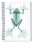 An X-ray Of A Flying Frog Spiral Notebook