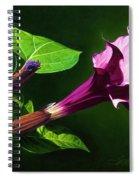 Anastacias Datura Spiral Notebook