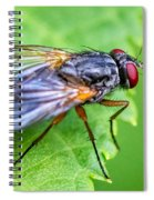 Anatomy Of A Pest Spiral Notebook