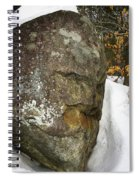 Ancestor Spiral Notebook