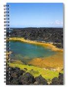Anchialine Pond Spiral Notebook