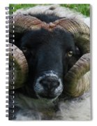 Anchored In Grace Spiral Notebook