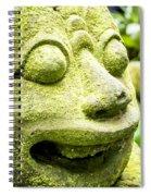 Ancient Artifacts 2 Spiral Notebook