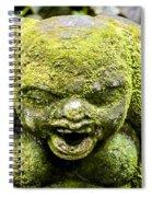 Ancient Artifacts 3 Spiral Notebook
