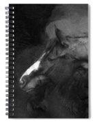 Ancient Black Horse No 1 Spiral Notebook