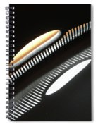Ancient Future Spiral Notebook