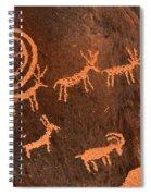 Ancient Indian Petroglyphs Spiral Notebook