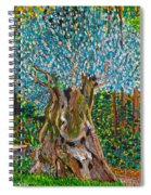 Ancient Olive Tree Spiral Notebook