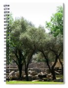 Ancient Ruins Temple Grounds 2 Spiral Notebook