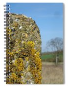 Ancient Stone Spiral Notebook