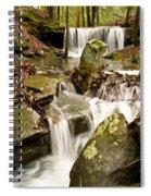 Ancient Stream Spiral Notebook