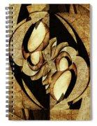 Ancient Symbols Spiral Notebook