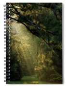 And A New Day Will Dawn... Spiral Notebook