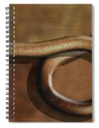 And Back Again Spiral Notebook