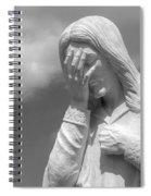 And Jesus Wept II Spiral Notebook