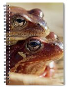 And Then I Found You. European Common Brown Frog Spiral Notebook