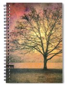 And The Morning Is Perfect In All Her Measured Wrinkles Spiral Notebook