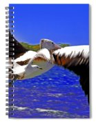 And The Seagull Follows Pelican Spiral Notebook