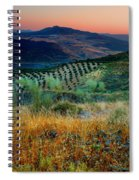 Andalucian Landscape  Spiral Notebook