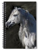 Andalusian Portrait Spiral Notebook
