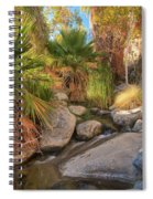 Andreas Canyon Babble Spiral Notebook