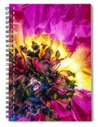 Anemone Abstracted In Fuchsia Spiral Notebook