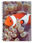 Anemone And Clown-fish Spiral Notebook