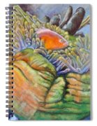 Anemone Coral And Fish Spiral Notebook
